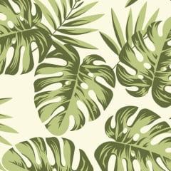 Tecido Tricoline Estampado Costela de Adão Verde 81018v01